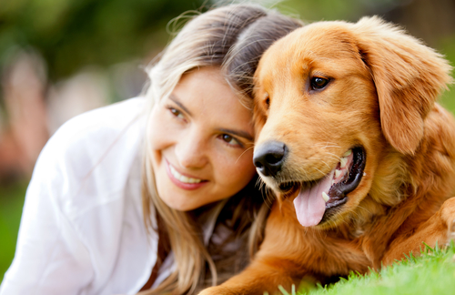 CranioSacral Therapy for Small Animals